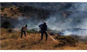 Elazığ'da yangın: 60 hektar ormanlık alan zarar gördü