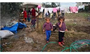 TÜİK, güvenlik birimlerine gelen veya getirilen çocukların istatistiklerini paylaştı