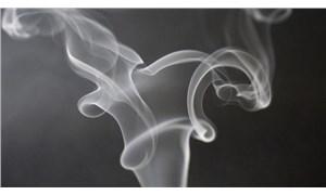 Bilim insanları, nikotinin bağışıklık sistemini 'saldırganlaştırdığını' kanıtladı