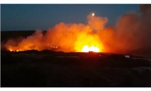 Bozcaada'da yangın: Yurttaşlardan yardım istendi