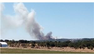 Ayvacık'ta orman yangını