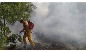 Siirt'te çıkan orman yangını kısmen söndürüldü