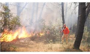 Aydos Ormanı'nda yine yangın çıktı