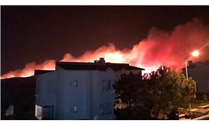 Çeşme'de orman yangını