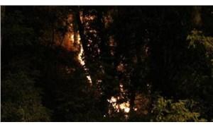 Emirgan Korusu'ndaki yangının nedeni belli oldu:  İşaret fişeği