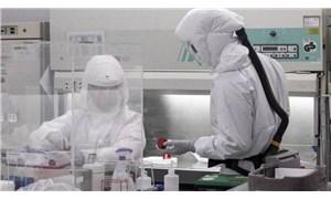 Dünya genelinde Covid-19 tespit edilen kişi sayısı 23 milyon 586 bini geçti
