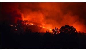 Kozan'da pazar günü başlayan orman yangınını söndürme çalışmaları devam ediyor