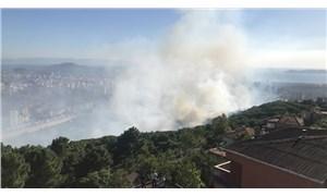 Maltepe'de ormanlık alanda çıkan yangın kontrol altına alındı