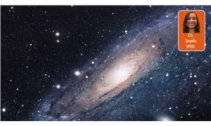 Evrende dönen karanlık işler-4