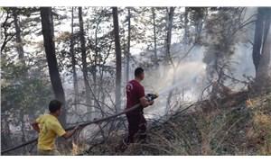 Zonguldak'ta orman yangını:100 dönüm alanetkilendi