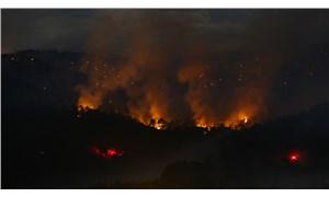 Ankara Nallıhan'da üst üste orman yangını