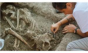 Bilecik'te bir apartmanın bahçesinde 8 bin 500 yıllık insan iskeleti bulundu