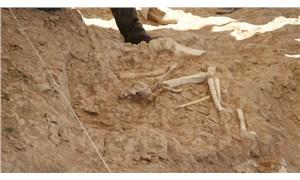 Kayseri'de 7,5 milyon yıllık zürafa, antilop ve fil fosilleri bulundu