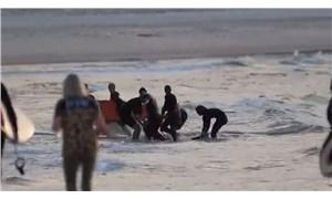 Köpek balığının saldırdığı sörfçü yaşamını yitirdi