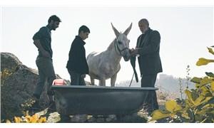 Sinemaya bir nefes: Ankara Film Festivali
