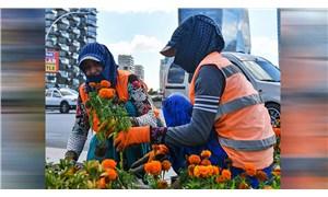 Türkiye'de erkeklerin geliri kadınlardan yüzde 31 fazla