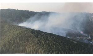 İzmir ve Aydın'da orman yangınları: Aydın'da 90 ev tahliye edildi
