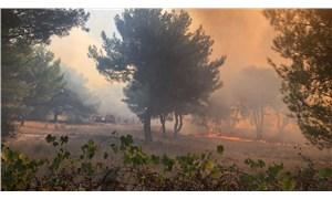 Hatay'da orman yangını: Yerleşim yerlerine sıçradı