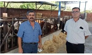 Ödemişli süt üreticileri destek bekliyor