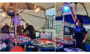 Mavi ve mor ışık kullananan balıkçılara dikkat