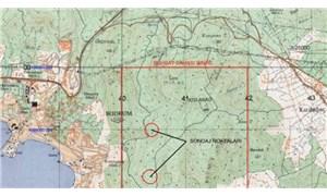Bodrum'da arkeolojik sit alanında jeotermal kaynak aranacak!