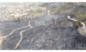 Hatay'daki yangın 22 saat sonra kontrol altında: CHP'li Yarkadaş'tan dikkat çeken iddia