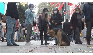 Mazgalı izleyen köpek itfaiyeyi harekete geçirdi