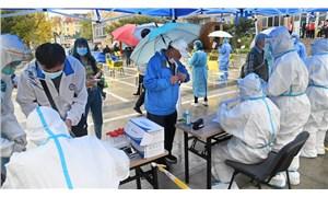 Dünya Sağlık Örgütü koronavirüsün kökenini araştıracak