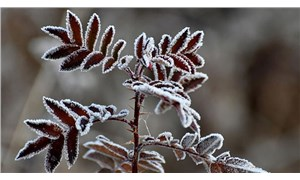Meteoroloji'den 4 il için buzlanma ve don uyarısı