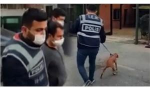 Hayvanlara yönelik cinsel istismar imalı paylaşımlarda bulunan şahsa para cezası