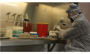 Filistin'de koronavirüs testi yapılamıyor