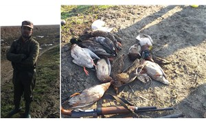 14 yaban ördeğini öldüren öğretmene 16 bin 657 lira ceza