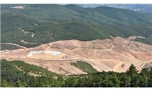 Orman Genel Müdürlüğü'nden büyük itiraf: Ormanlarımız paramparça