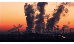 Dünyada bir ilk: 9 yaşındaki kızın ölüm nedeninin hava kirliliği olduğuna karar verildi