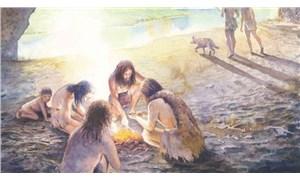 Neandertallerin türlerinin yok olmasında çiftleşme alışkanlıklarının etkisi olabilir