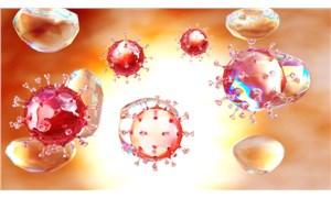 Mutasyonlu koronavirüs 50 ülkeye yayıldı, Japonya'da ise yeni bir mutasyon ortaya çıktı