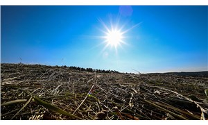 Geçen yıl Türkiye'nin 198 merkezinde ekstrem sıcaklık rekoru kırıldı