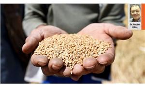 2021'in başında  tarım ve gıdaya bakış