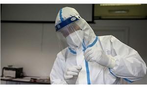 Mutasyona uğramış koronavirüs iki ülkede daha görüldü