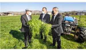 Soyer üreticiye müjde verdi: Beydağ 'kestane merkezi' olacak