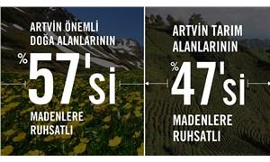 Artvin'de tarım bitecek, doğa yok edilecek