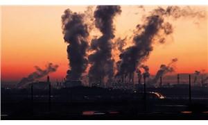 Yanan sadece kömür değil