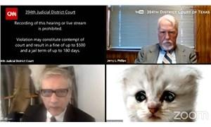Online duruşmaya katılan avukat, kendisinin kedi olmadığına 'inandırmaya çalıştı'