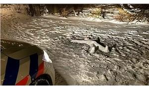 Amsterdam'da polisin cinayet sandığı görüntünün altından 'kardan adam' çıktı