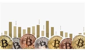 Bitcoin'in akıbeti laleye benzer mi?