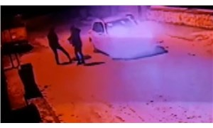 Konya'da köpeği silahla vurduktan sonra tekmeleyip çöpe attılar!