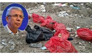 Mansur Yavaş'tan köpek katliamı açıklaması: Bizzat takipçisi olacağım