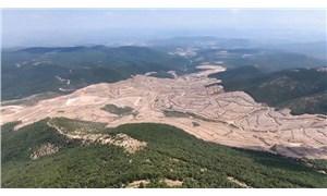 Kazdağları'nda 350 bin ağaç katledilmişti: Alanı şirket rehabilite etmek zorunda, maliyet yurttaşın cebinden çıkmasın