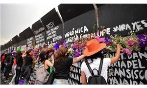 Meksika'da kadınlar, başkanlık sarayının etrafına örülen duvarları protesto etti