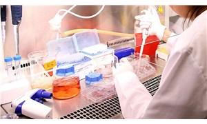 Araştırma: Hücreler elektrikle uyarıldığında yaralar daha hızlı iyileşiyor